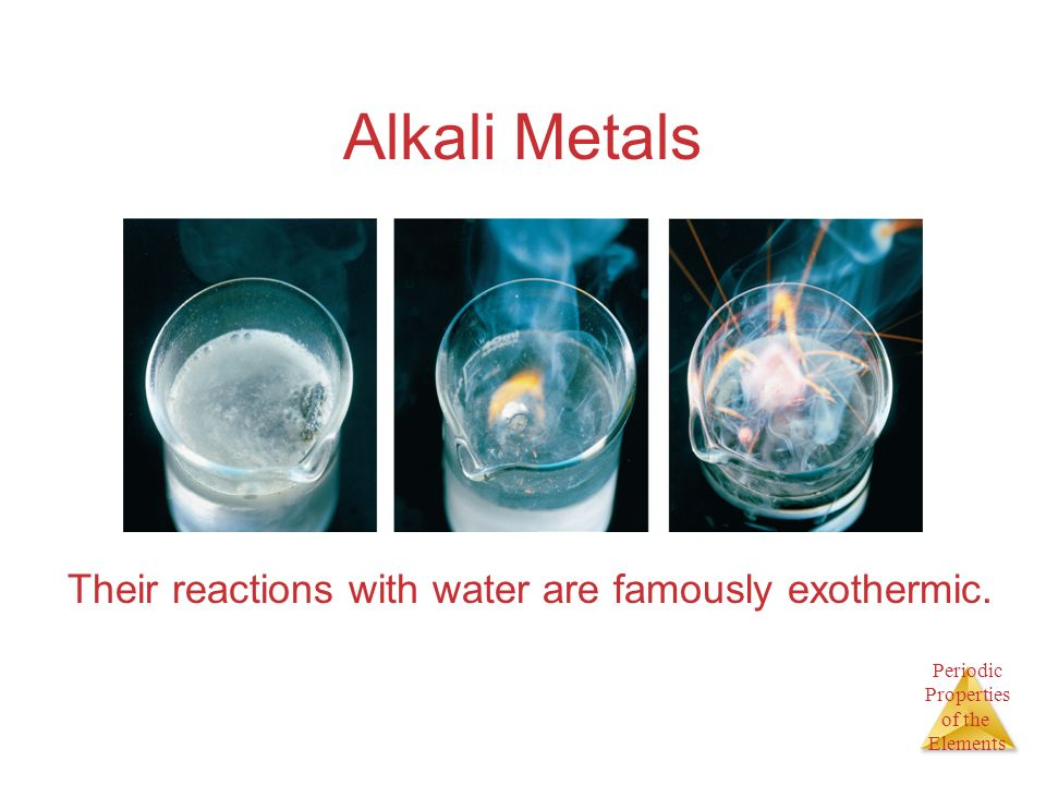 Periodic Properties of the Elements Alkali Metals Their reactions with water are famously exothermic.