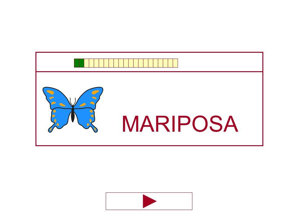 MARIPO … ZA SA A CA LA