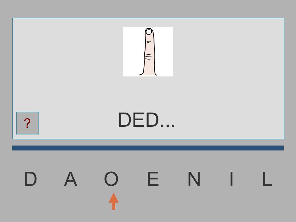 D A O E N I L DE...... ?