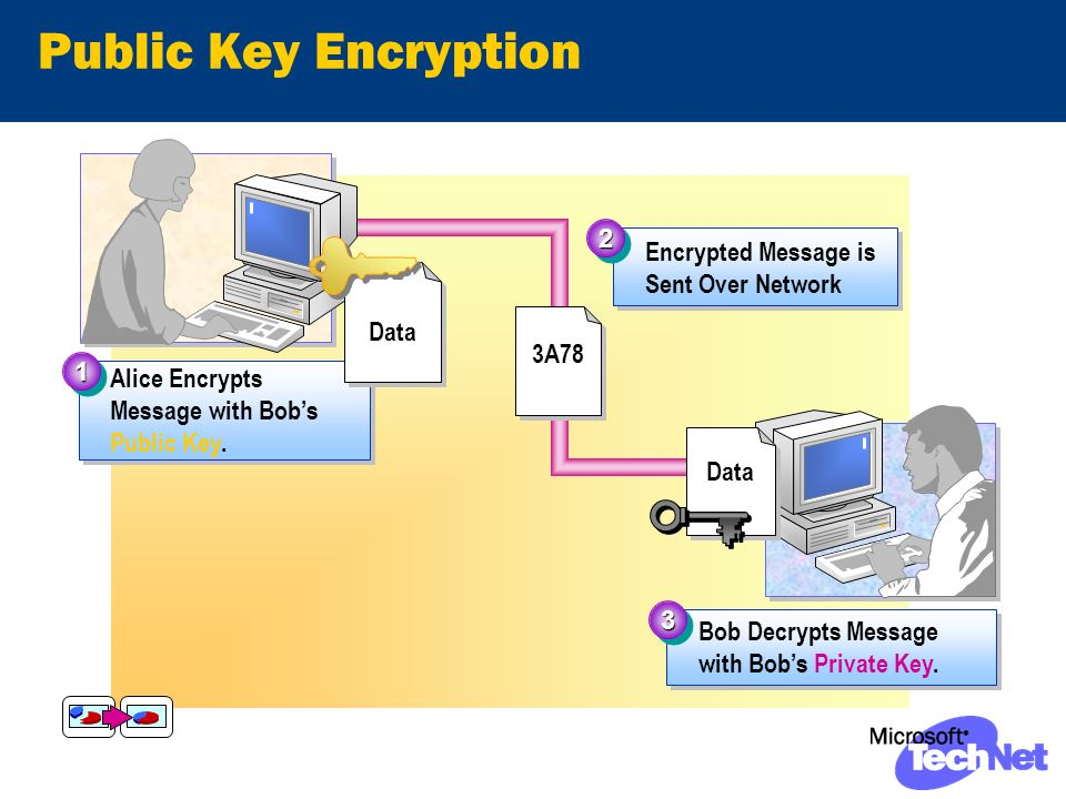 Public Key Encryption Encrypted Message is Sent Over Network 22 3A78 Alice Encrypts Message with Bobs Public Key.