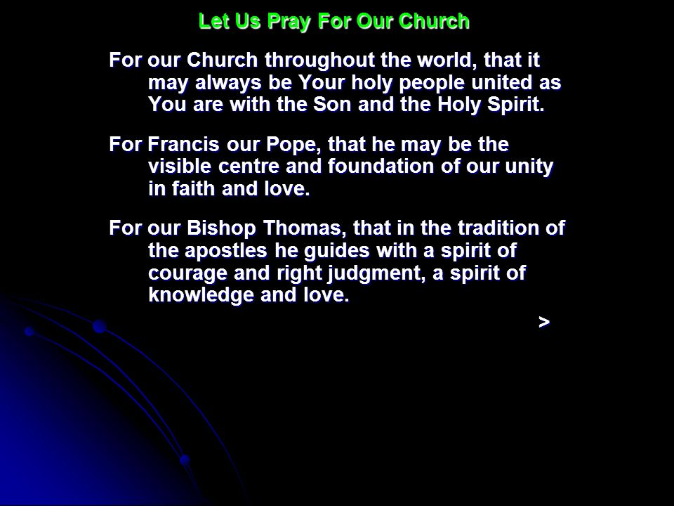 For our Church throughout the world, that it may always be Your holy people united as You are with the Son and the Holy Spirit. For Francis our Pope,