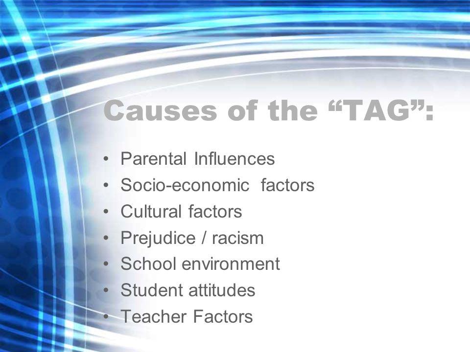 Causes of the TAG: Parental Influences Socio-economic factors Cultural factors Prejudice / racism School environment Student attitudes Teacher Factors