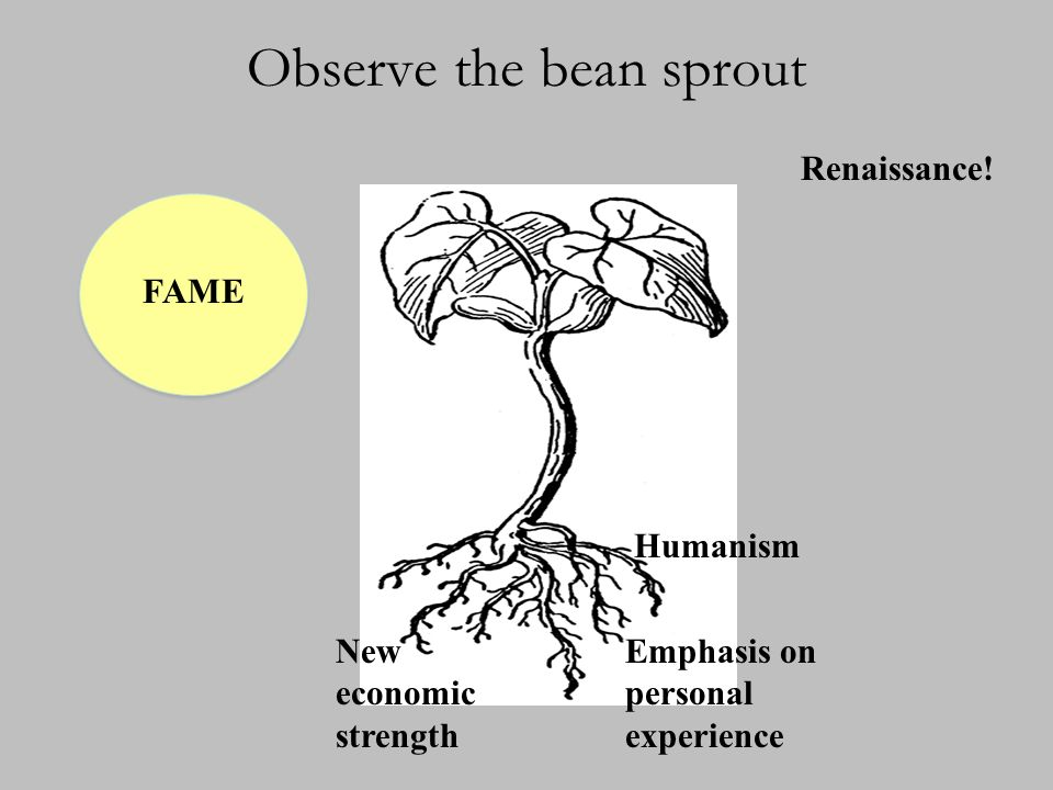 Observe the bean sprout New economic strength Humanism Emphasis on personal experience FAME Renaissance!