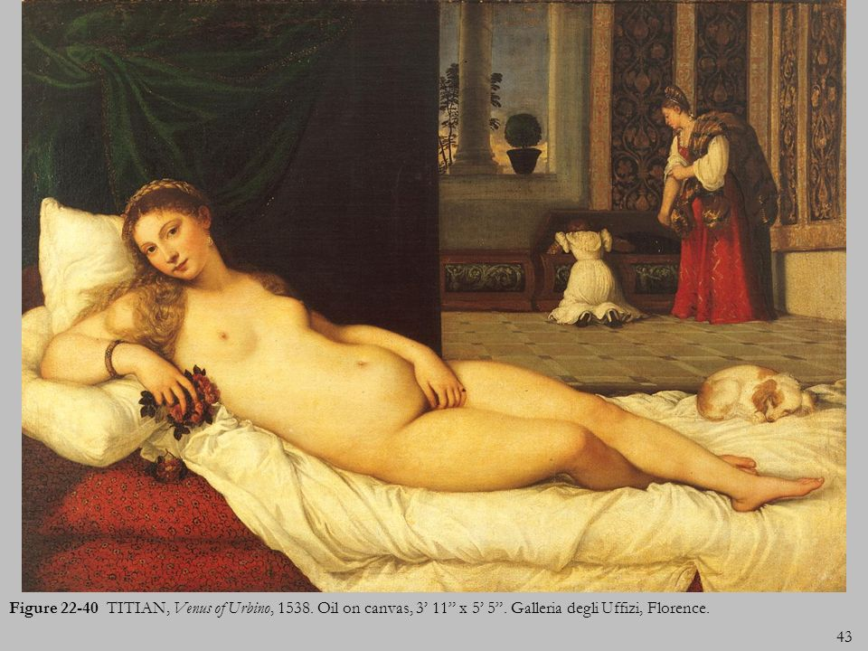 43 Figure 22-40 TITIAN, Venus of Urbino, 1538. Oil on canvas, 3 11 x 5 5. Galleria degli Uffizi, Florence.