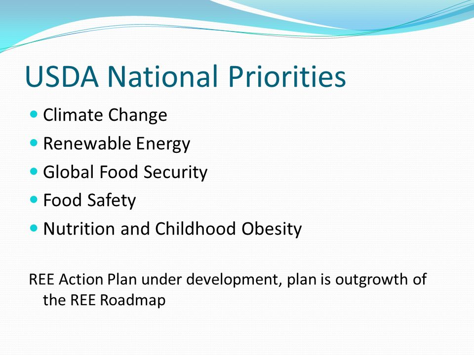 USDA National Priorities Climate Change Renewable Energy Global Food Security Food Safety Nutrition and Childhood Obesity REE Action Plan under development, plan is outgrowth of the REE Roadmap
