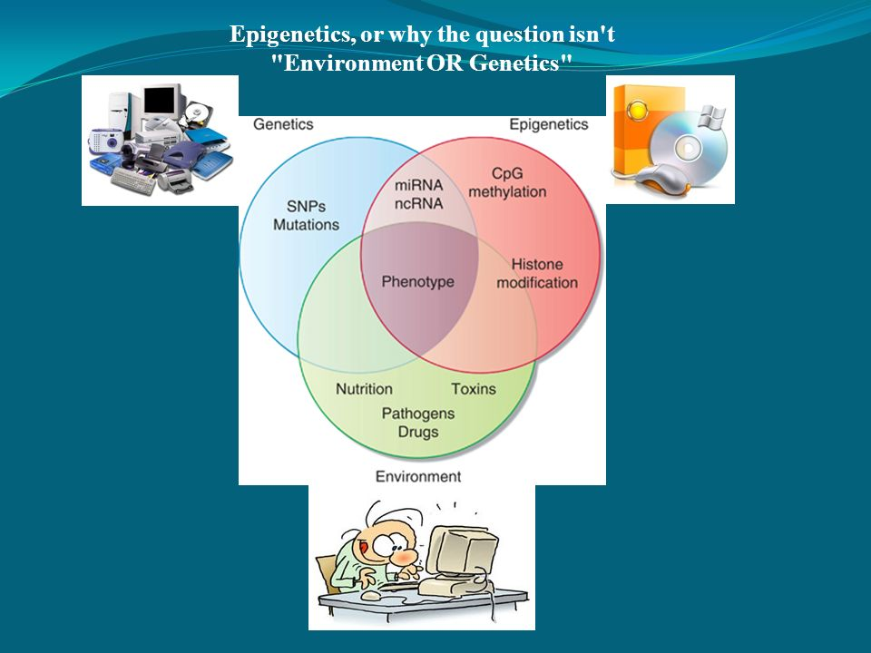 Epigenetics, or why the question isn't