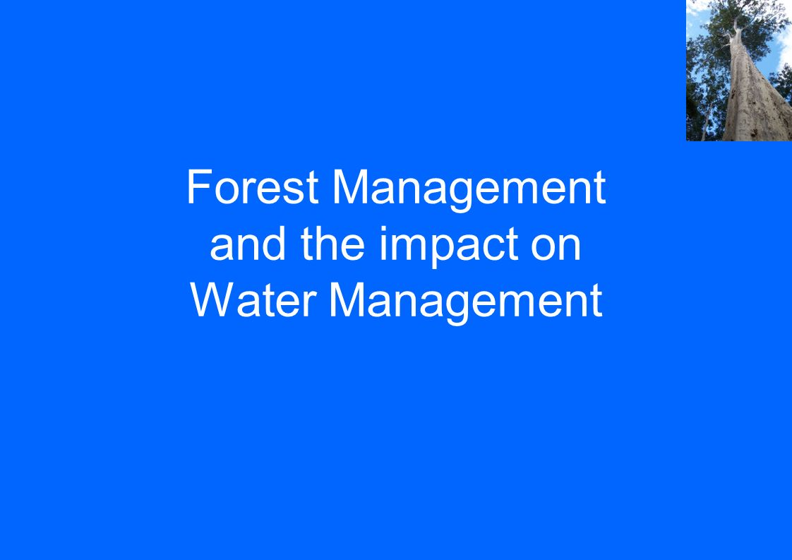 Forest Management and the impact on Water Management