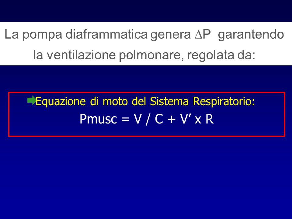 La pompa diaframmatica genera P garantendo la ventilazione polmonare, regolata da: Equazione di moto del Sistema Respiratorio: Pmusc = V / C + V x R