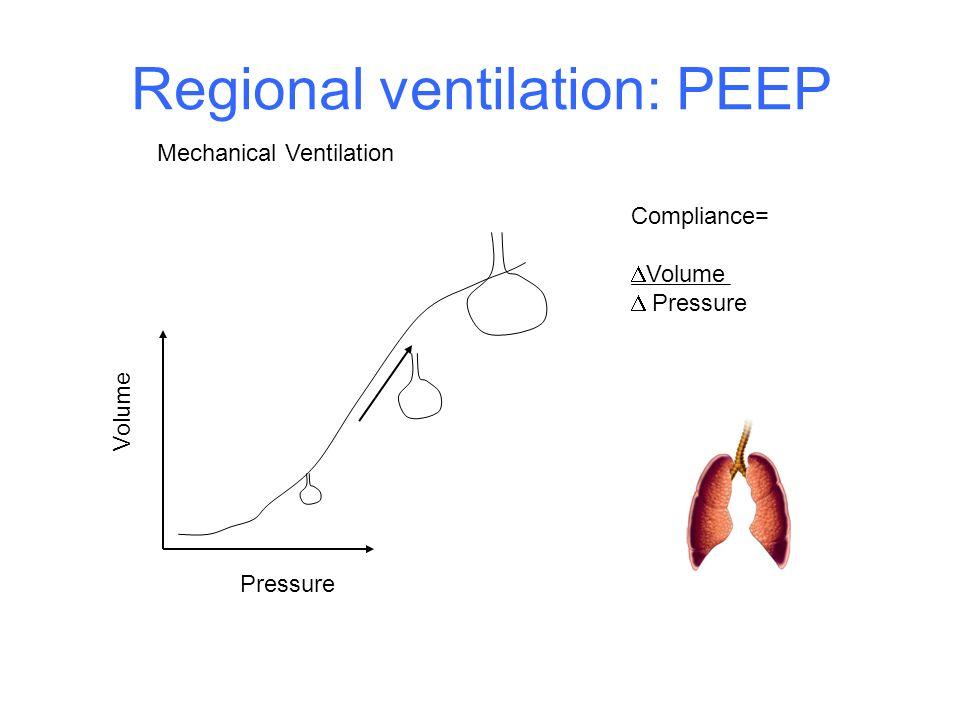 Regional ventilation: PEEP Volume Pressure Compliance= Volume Pressure Mechanical Ventilation