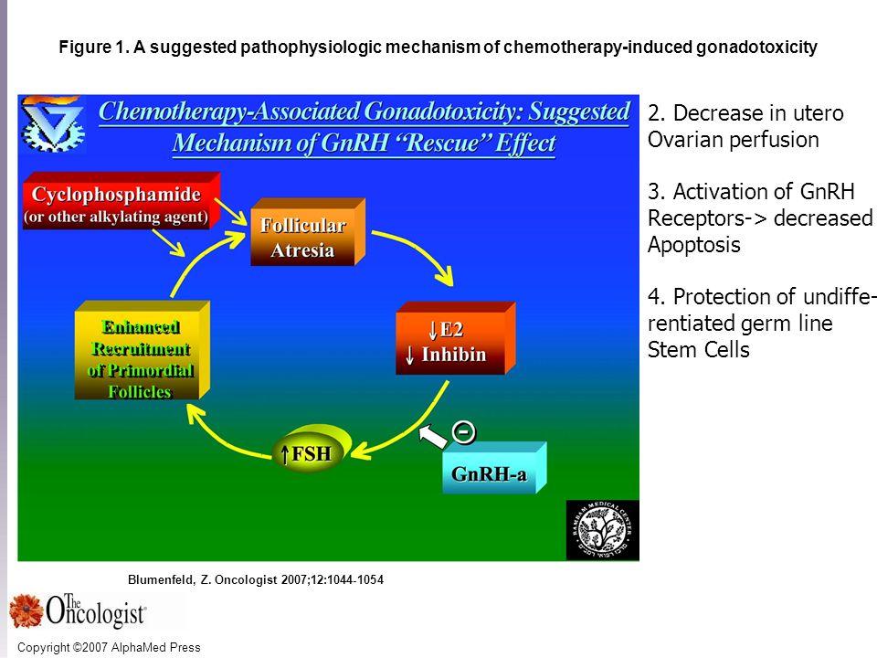 Copyright ©2007 AlphaMed Press Blumenfeld, Z. Oncologist 2007;12:1044-1054 Figure 1.