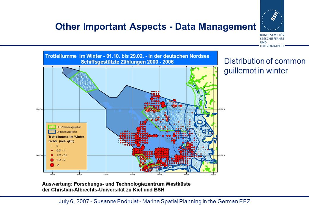 July 6, Susanne Endrulat - Marine Spatial Planning in the German EEZ Other Important Aspects - Data Management Distribution of common guillemot in winter
