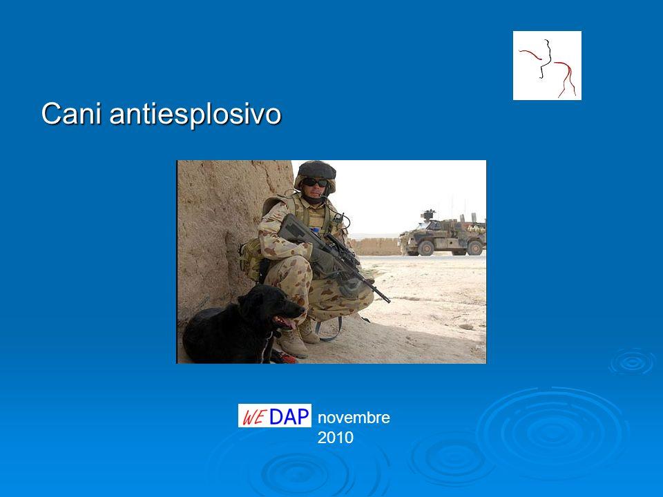 novembre 2010 Cani antiesplosivo