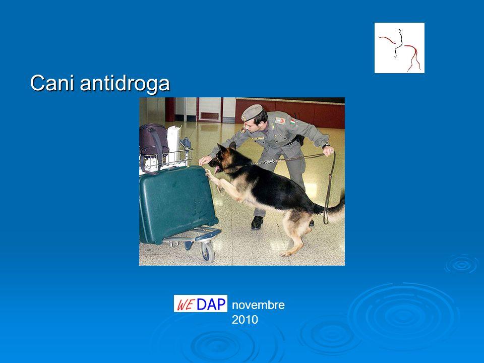 novembre 2010 Cani antidroga