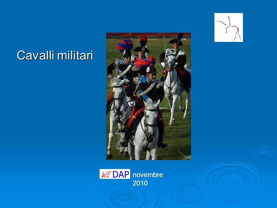 Cavalli militari