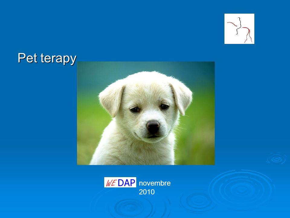 Pet terapy