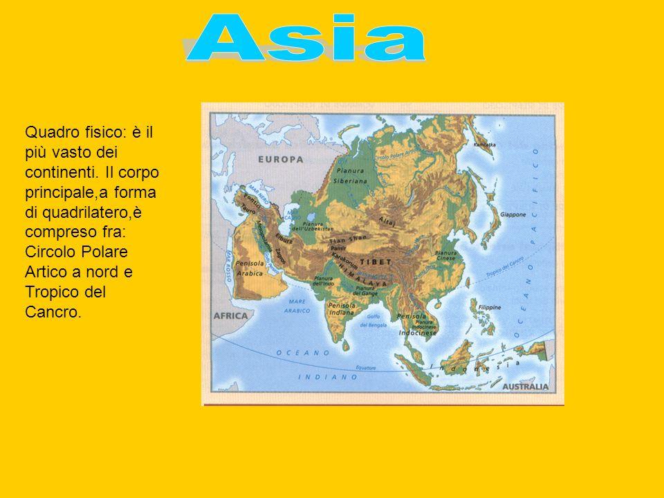 Quadro fisico: è il più vasto dei continenti.