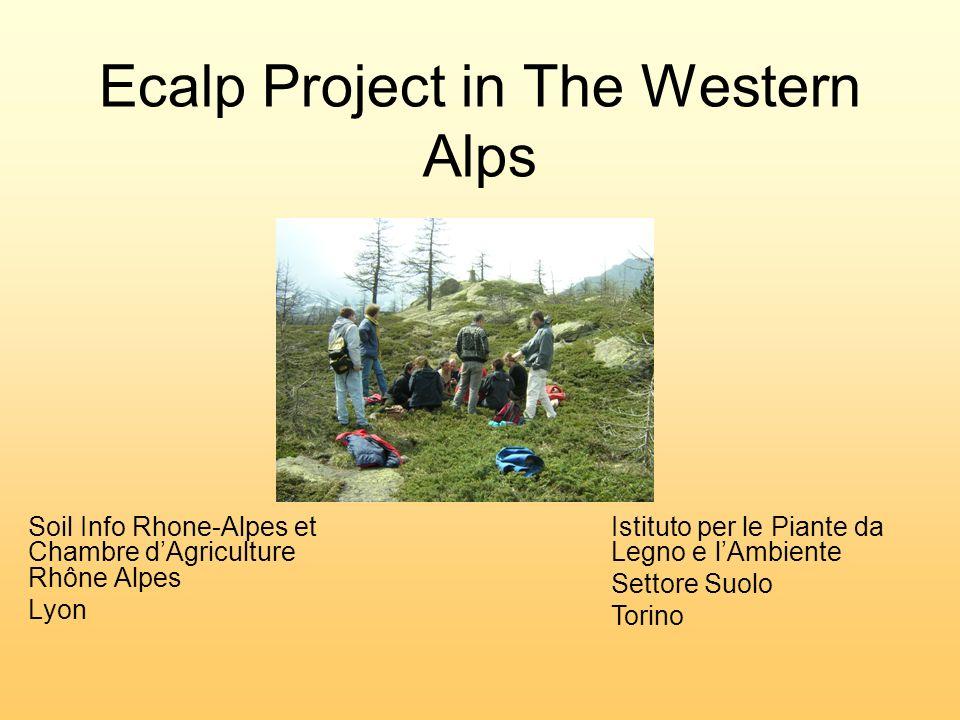 Ecalp Project in The Western Alps Soil Info Rhone-Alpes et Chambre dAgriculture Rhône Alpes Lyon Istituto per le Piante da Legno e lAmbiente Settore Suolo Torino