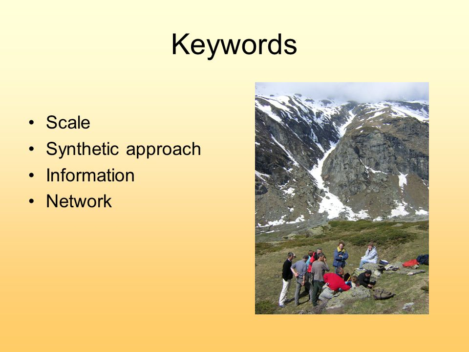 Keywords Scale Synthetic approach Information Network