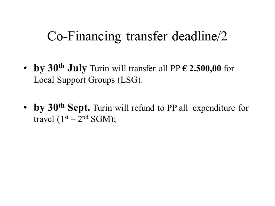 Co-Financing transfer deadline/2 by 30 th July Turin will transfer all PP 2.500,00 for Local Support Groups (LSG).