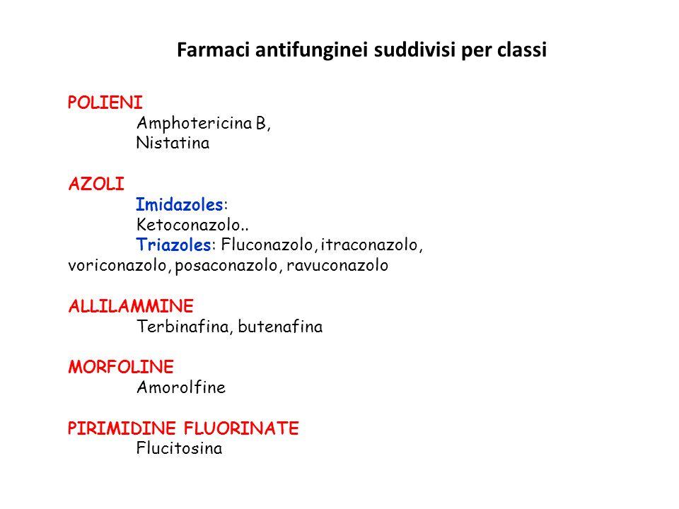 POLIENI Amphotericina B, Nistatina AZOLI Imidazoles: Ketoconazolo.. Triazoles: Fluconazolo, itraconazolo, voriconazolo, posaconazolo, ravuconazolo ALL