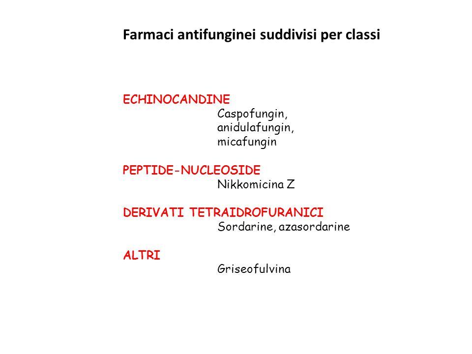 ECHINOCANDINE Caspofungin, anidulafungin, micafungin PEPTIDE-NUCLEOSIDE Nikkomicina Z DERIVATI TETRAIDROFURANICI Sordarine, azasordarine ALTRI Griseof