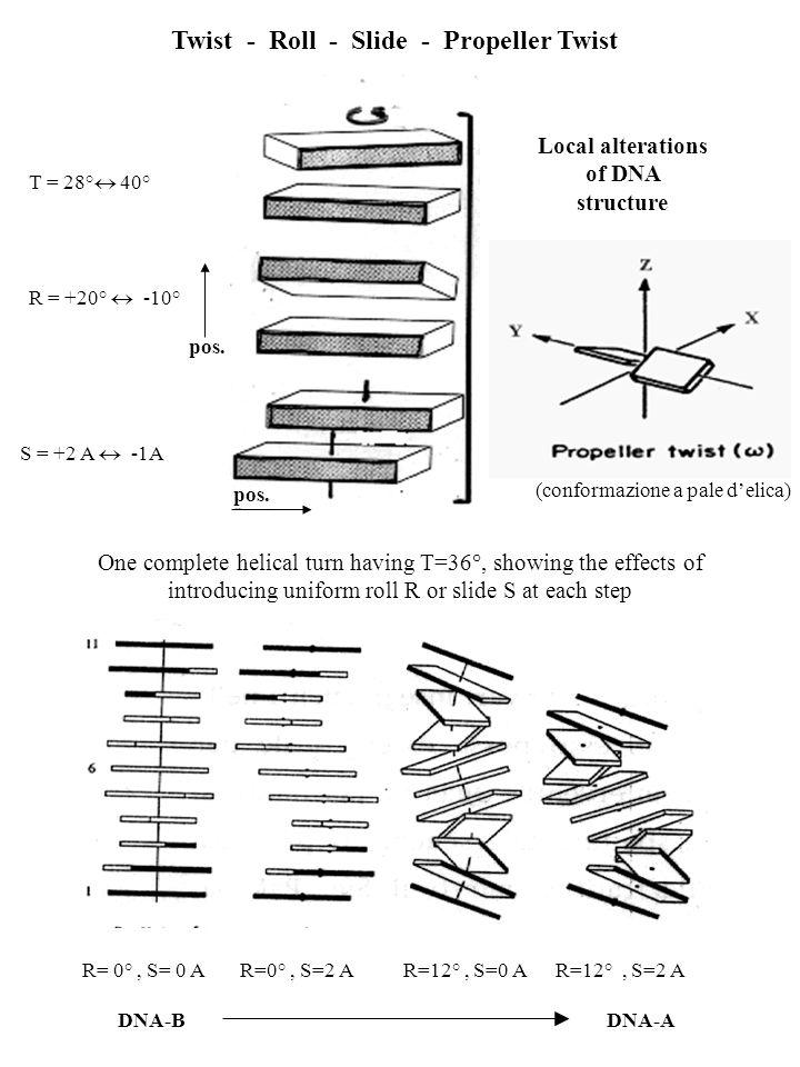 Twist - Roll - Slide - Propeller Twist T = 28° 40° R = +20° -10° S = +2 A -1A pos. R= 0°, S= 0 A R=0°, S=2 A R=12°, S=0 A R=12°, S=2 A One complete he