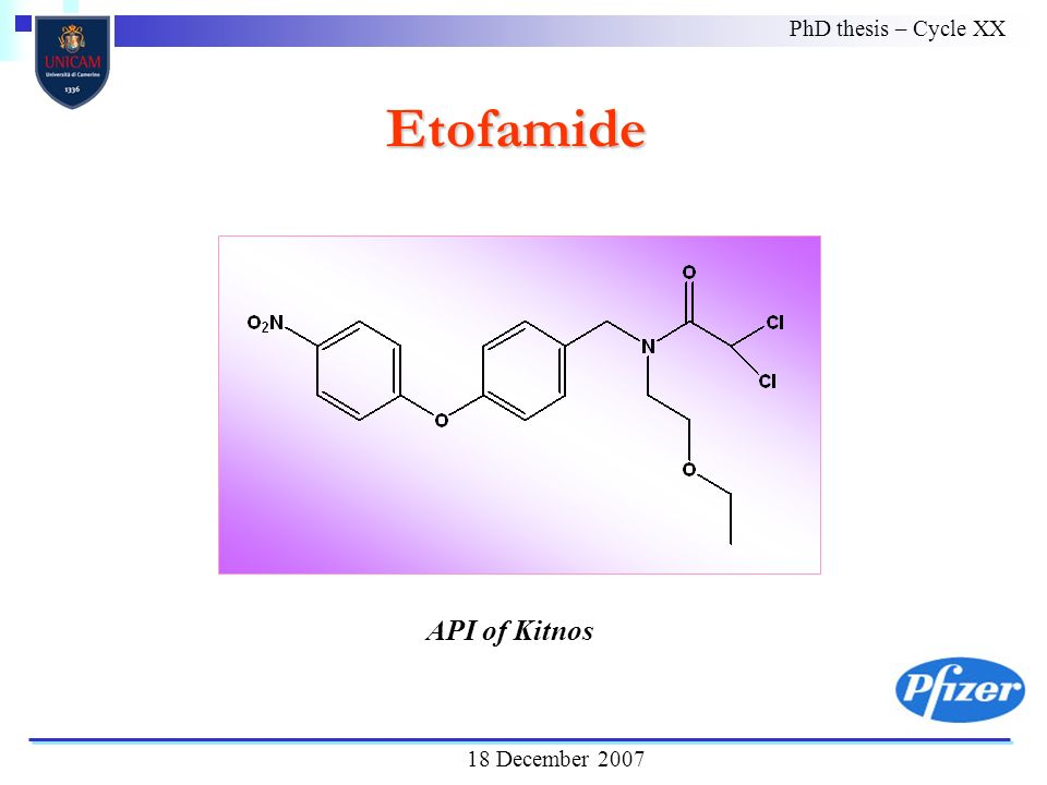 PhD thesis – Cycle XX 18 December 2007 Etofamide API of Kitnos