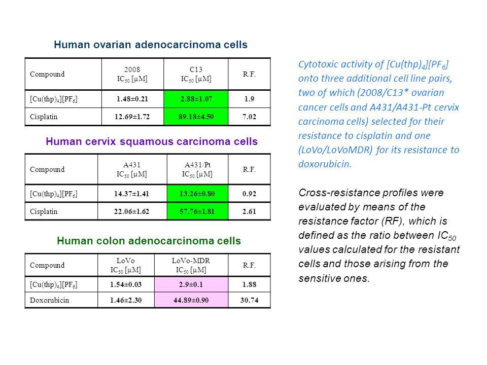 Compound 2008 IC 50 [µM] C13 IC 50 [µM] R.F. [Cu(thp) 4 ][PF 6 ]1.48±0.212.88±1.071.9 Cisplatin12.69±1.7289.18±4.507.02 Compound A431 IC 50 [µM] A431/