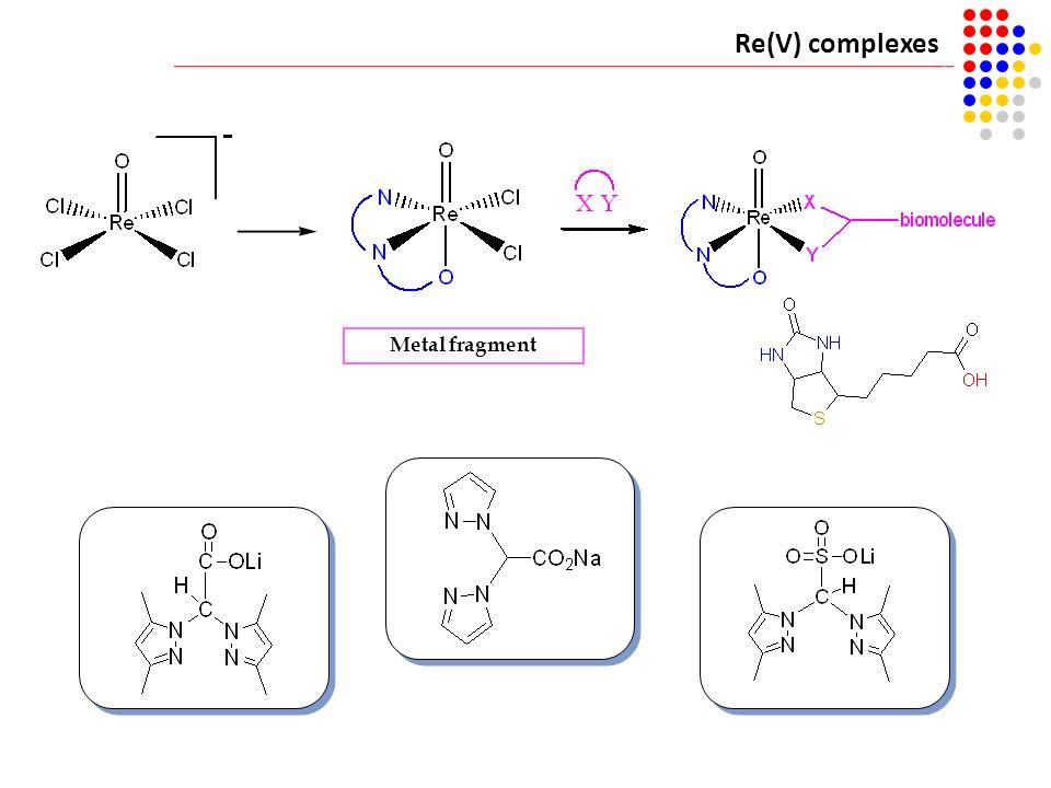 Re(V) complexes Metal fragment