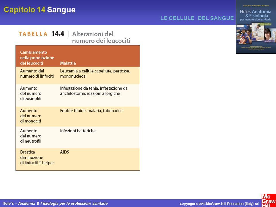 Capitolo 14 Sangue Holes – Anatomia & Fisiologia per le professioni sanitarie Copyright © 2013 McGraw-Hill Education (Italy) srl LE CELLULE DEL SANGUE