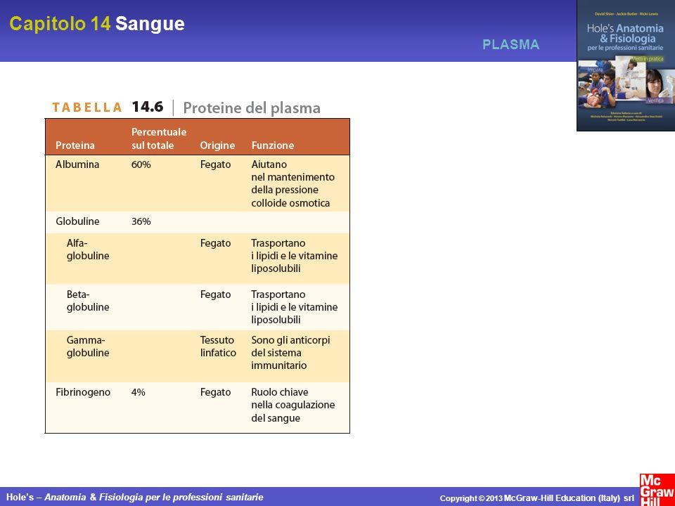 Capitolo 14 Sangue Holes – Anatomia & Fisiologia per le professioni sanitarie Copyright © 2013 McGraw-Hill Education (Italy) srl PLASMA