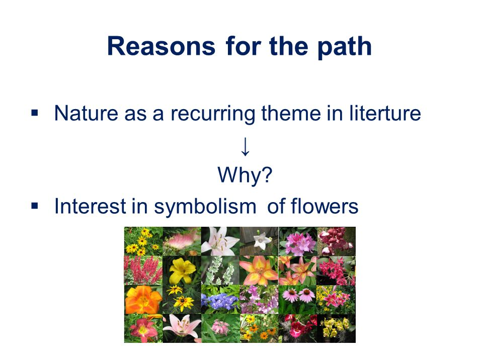 Reasons for the path Nature as a recurring theme in literture Why Interest in symbolism of flowers