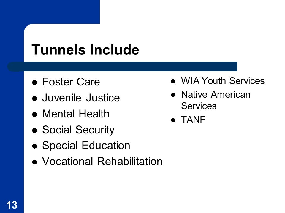13 Tunnels Include Foster Care Juvenile Justice Mental Health Social Security Special Education Vocational Rehabilitation WIA Youth Services Native Am