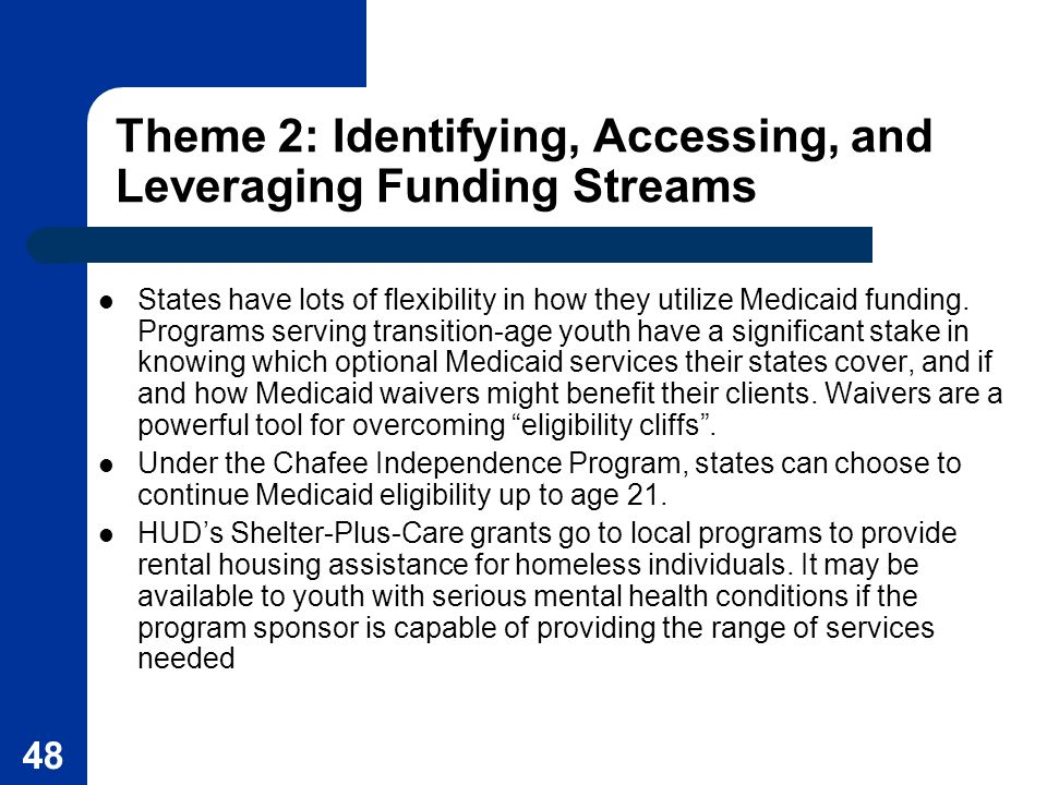 48 Theme 2: Identifying, Accessing, and Leveraging Funding Streams States have lots of flexibility in how they utilize Medicaid funding. Programs serv