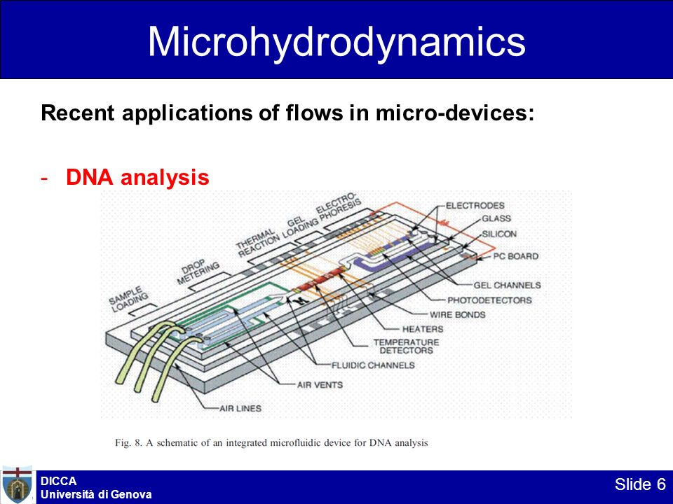 Microhydrodynamics Recent applications of flows in micro-devices: -DNA analysis DICCA Università di Genova Slide 6