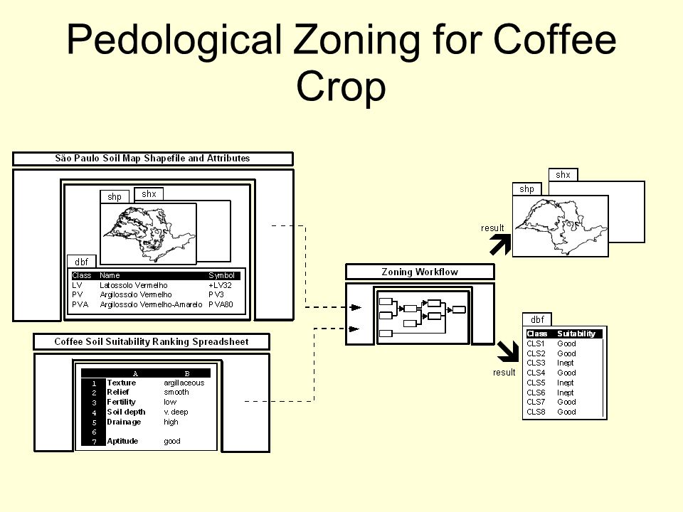 Pedological Zoning for Coffee Crop