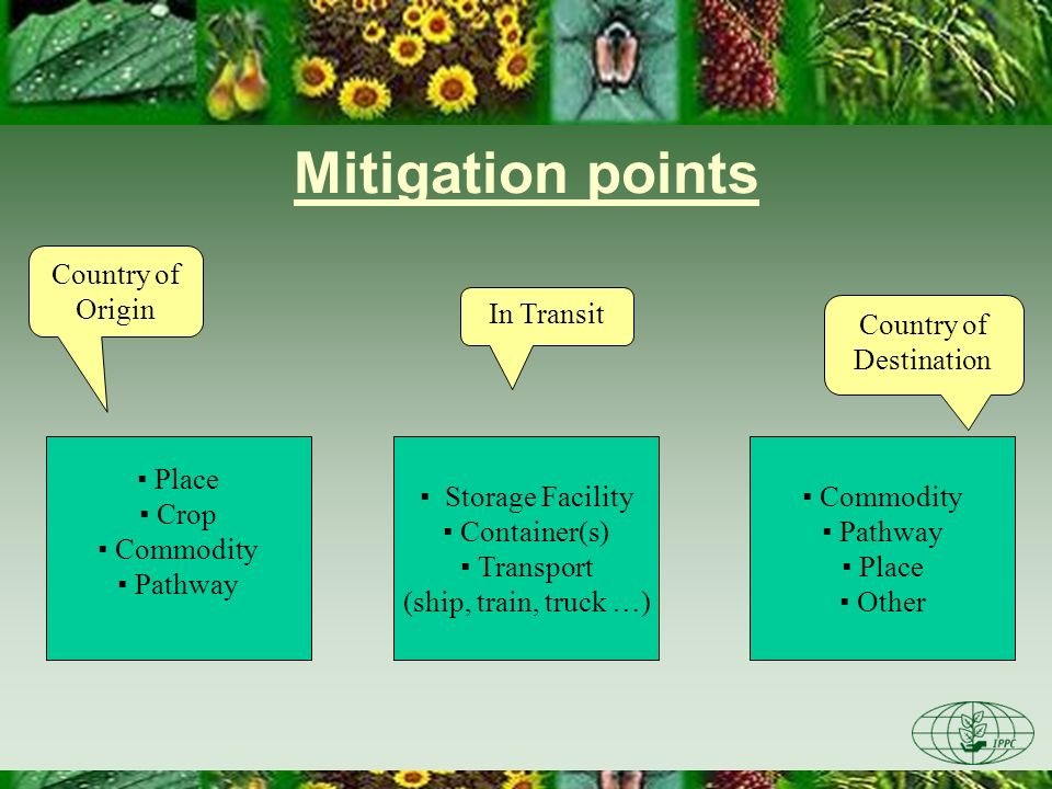 Mitigation points Place Crop Commodity Pathway Country of Origin Country of Destination In Transit Storage Facility Container(s) Transport (ship, trai