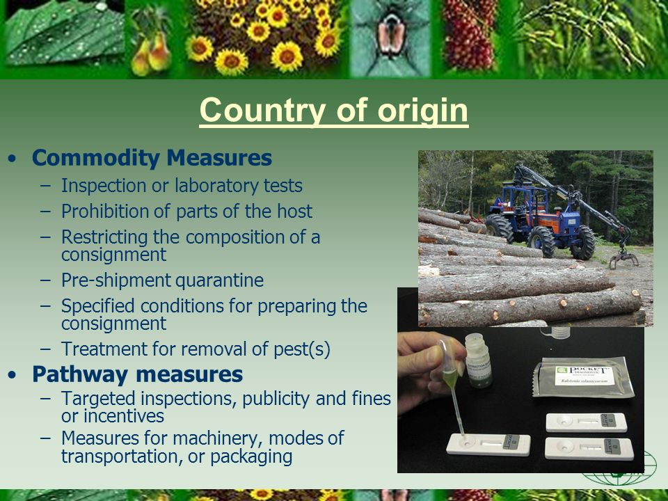 Country of origin Commodity Measures –Inspection or laboratory tests –Prohibition of parts of the host –Restricting the composition of a consignment –