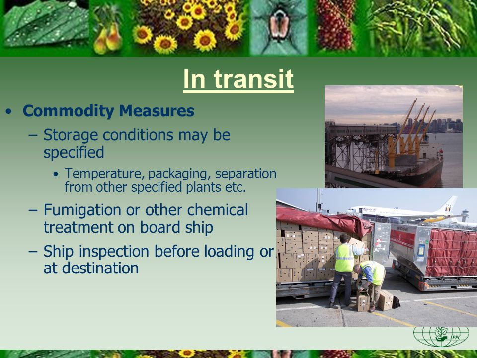 In transit Commodity Measures –Storage conditions may be specified Temperature, packaging, separation from other specified plants etc. –Fumigation or