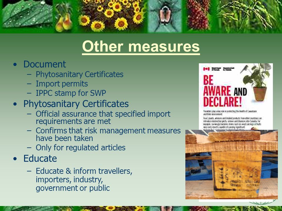 Other measures Document –Phytosanitary Certificates –Import permits –IPPC stamp for SWP Phytosanitary Certificates –Official assurance that specified