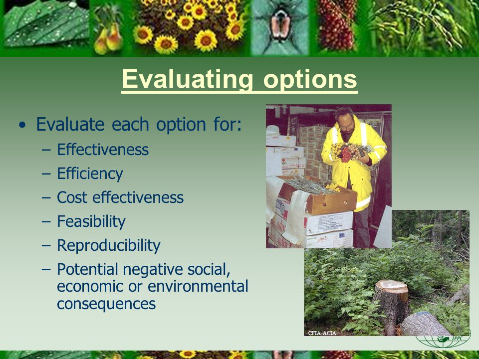 Evaluating options Evaluate each option for: –Effectiveness –Efficiency –Cost effectiveness –Feasibility –Reproducibility –Potential negative social,