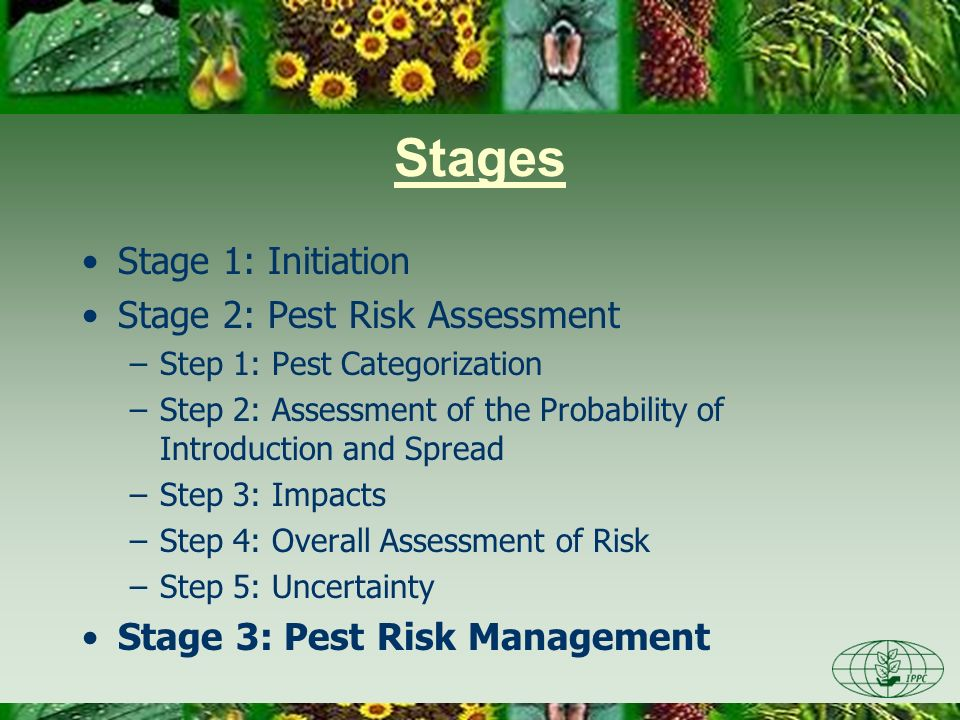 Pest risk analysis Stage 1 (initiation) asked: –What bad thing can happen.