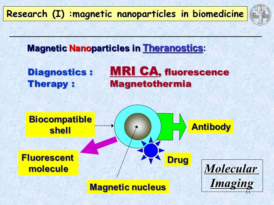 11 Magnetic Nanoparticles in Theranostics Magnetic Nanoparticles in Theranostics : Research (I) :magnetic nanoparticles in biomedicine Diagnostics : M
