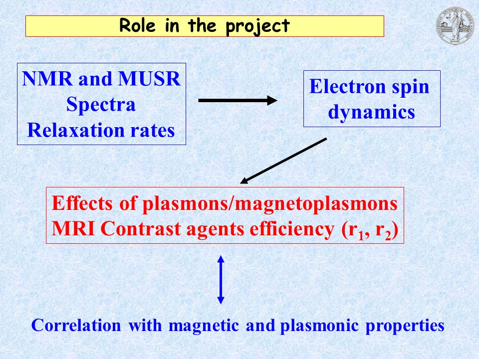 Role in the project NMR and MUSR Spectra Relaxation rates NMR and MUSR Spectra Relaxation rates Electron spin dynamics Electron spin dynamics Effects