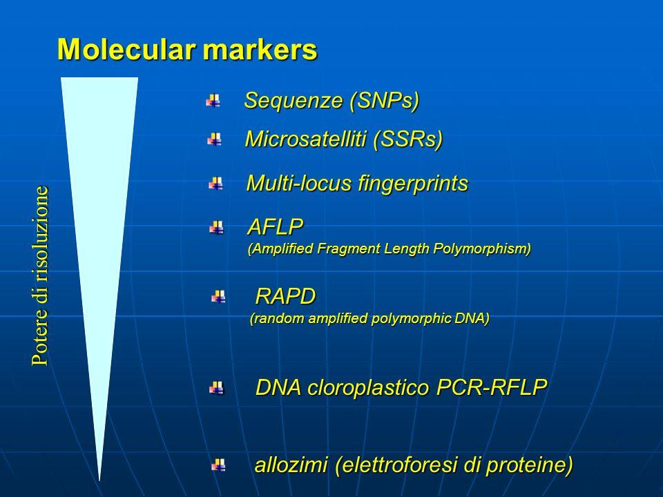 Sequenze di proteine o DNA facilmente distinguibili, la cui eredità può essere verificata e associata con tratti ereditati indipendentemente dallambie