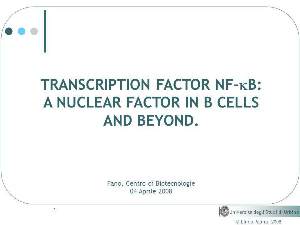 1 TRANSCRIPTION FACTOR NF- B: A NUCLEAR FACTOR IN B CELLS AND BEYOND. Fano, Centro di Biotecnologie 04 Aprile 2008 © Linda Palma, 2008 Università degl