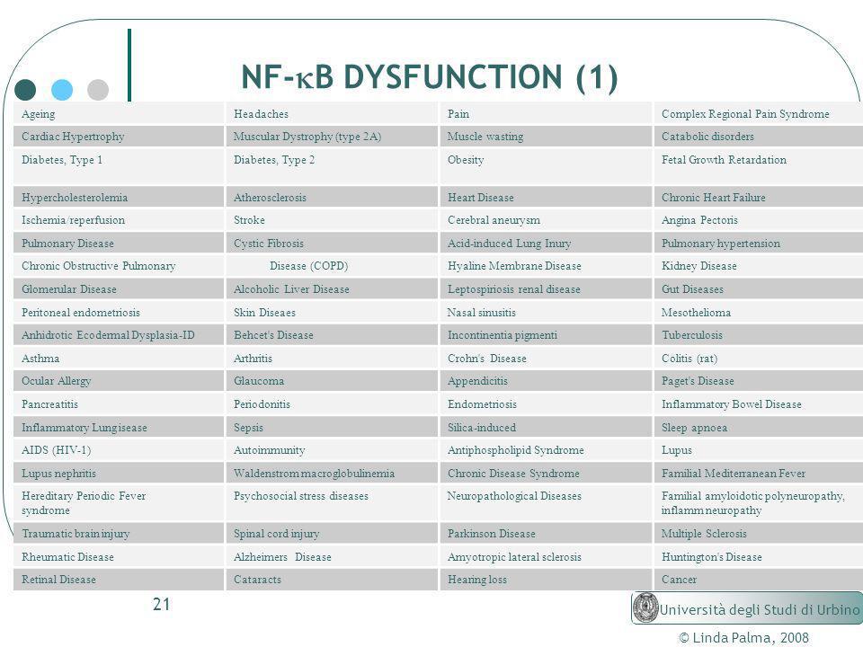 21 © Linda Palma, 2008 Università degli Studi di Urbino NF- B DYSFUNCTION (1) AgeingHeadaches Pain Complex Regional Pain Syndrome Cardiac Hypertrophy
