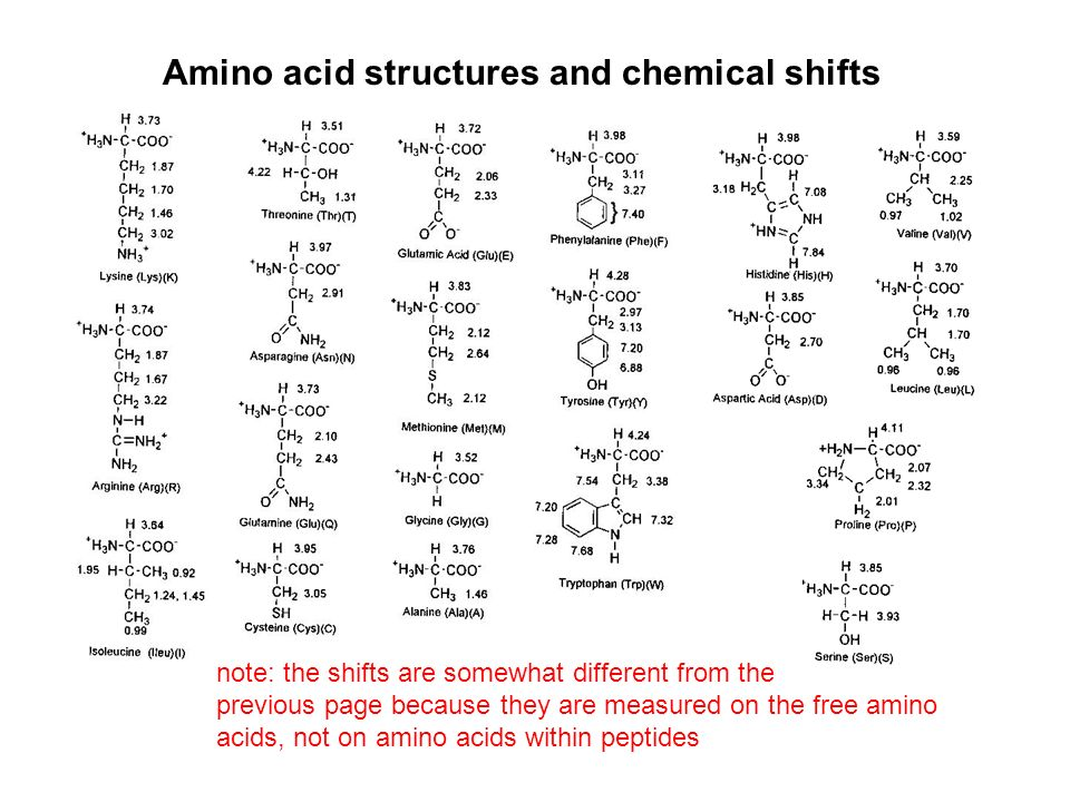 Amino acid structures and chemical shifts note: the shifts are somewhat different from the previous page because they are measured on the free amino acids, not on amino acids within peptides