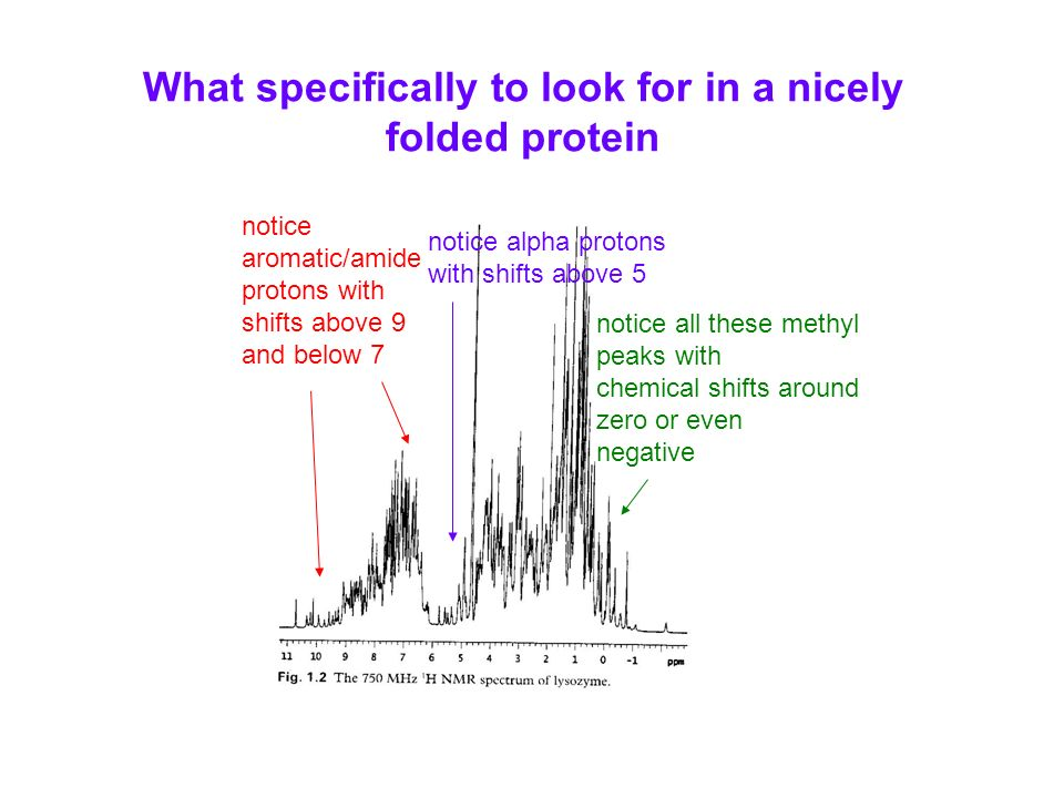 What specifically to look for in a nicely folded protein notice aromatic/amide protons with shifts above 9 and below 7 notice alpha protons with shifts above 5 notice all these methyl peaks with chemical shifts around zero or even negative