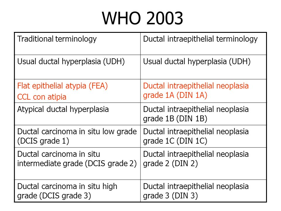 WHO 2003 Traditional terminologyDuctal intraepithelial terminology Usual ductal hyperplasia (UDH) Flat epithelial atypia (FEA) CCL con atipia Ductal i